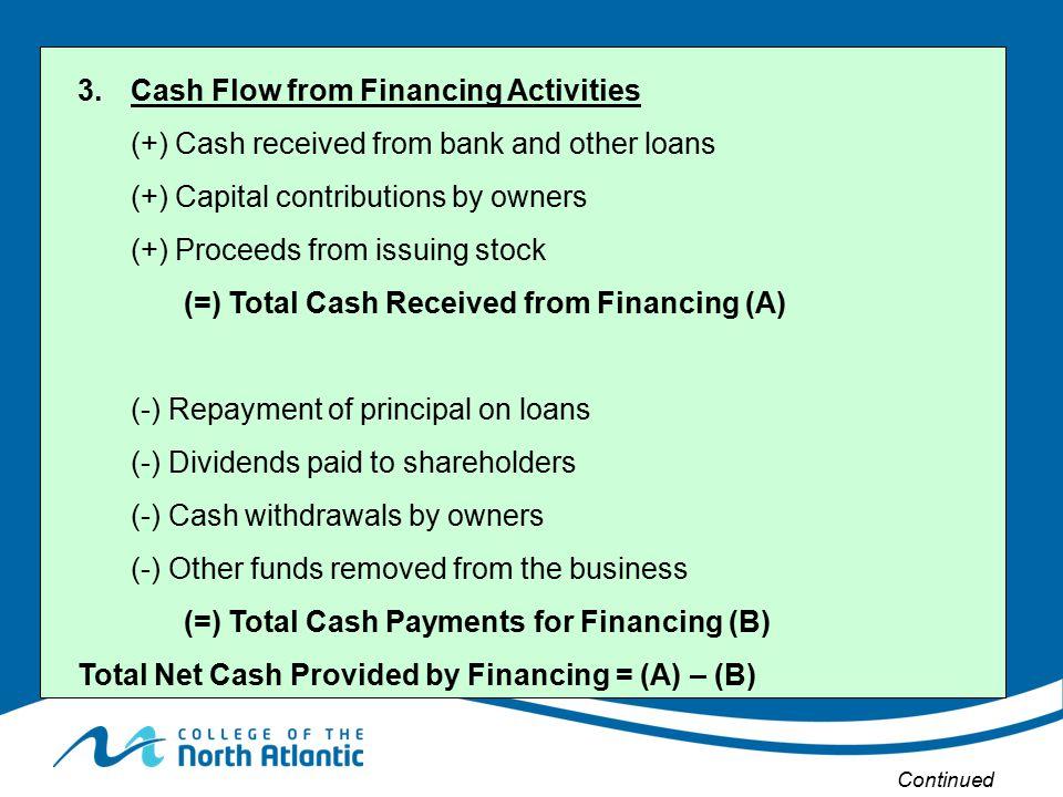 3. Cash Flow from Financing Activities