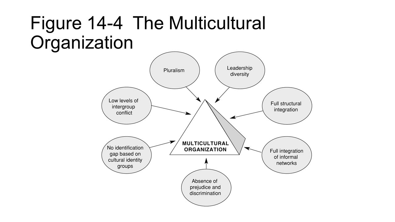 Figure 14-4 The Multicultural Organization