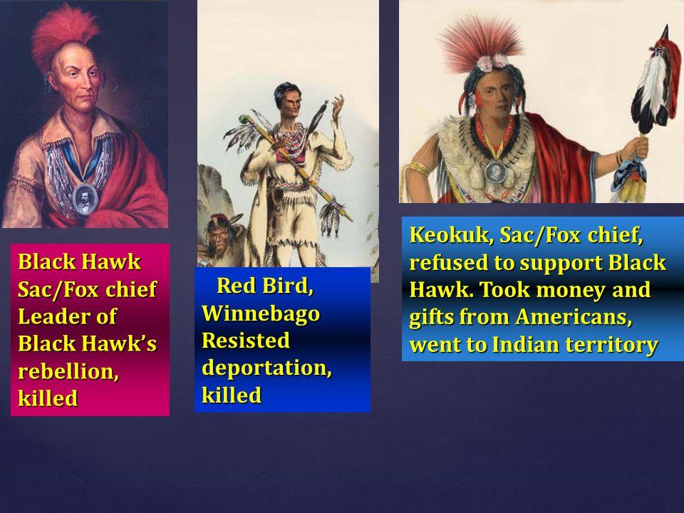 Keokuk, Sac/Fox chief, refused to support Black Hawk