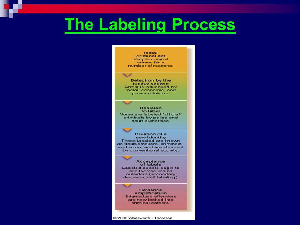 The Labeling Process