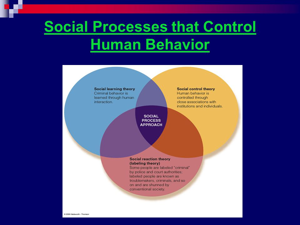 Social Control Theory and Criminal Behavior