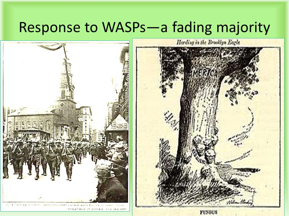 Response to WASPs—a fading majority