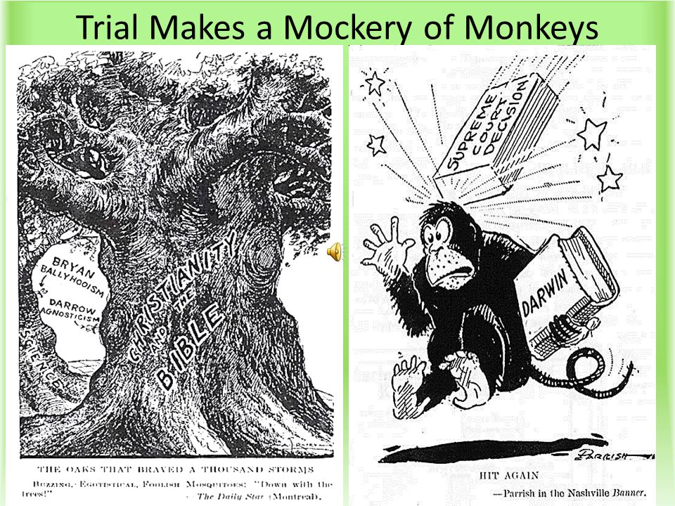 Trial Makes a Mockery of Monkeys