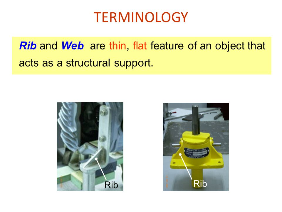 TERMINOLOGY Rib and Web are thin, flat feature of an object that acts as a structural support. Rib.