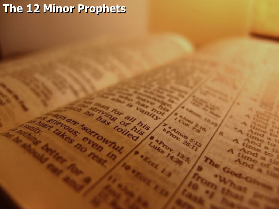 The 12 Minor Prophets