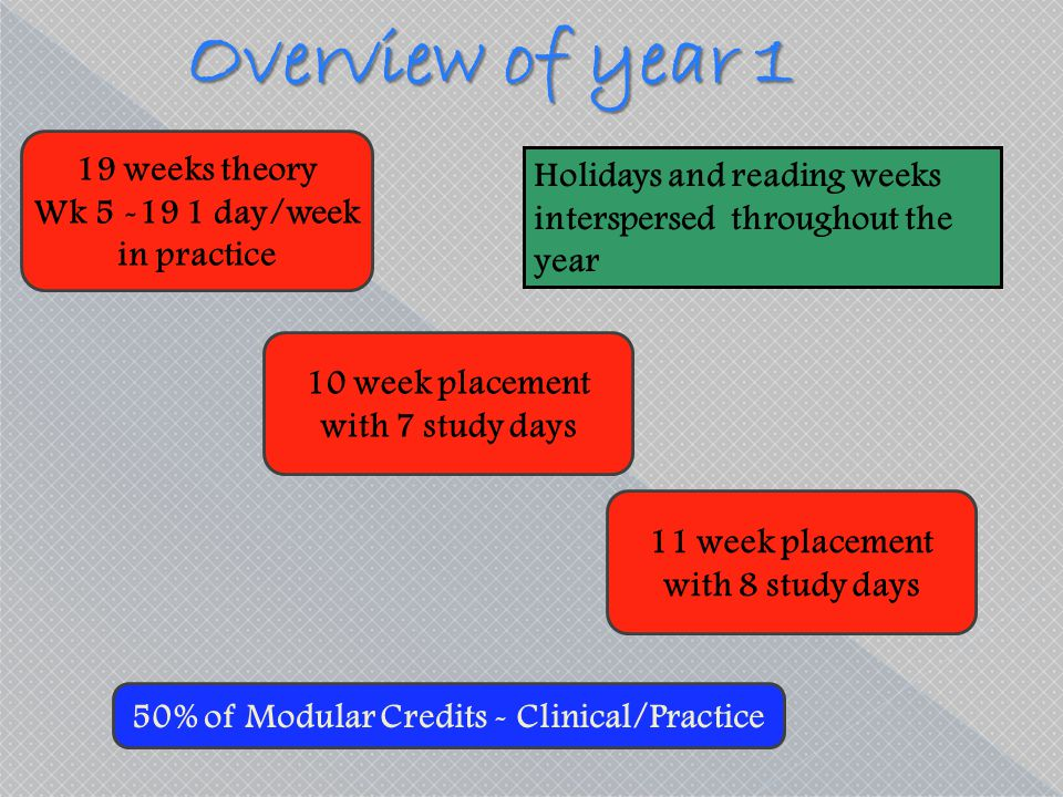 Overview of year 1 19 weeks theory Holidays and reading weeks