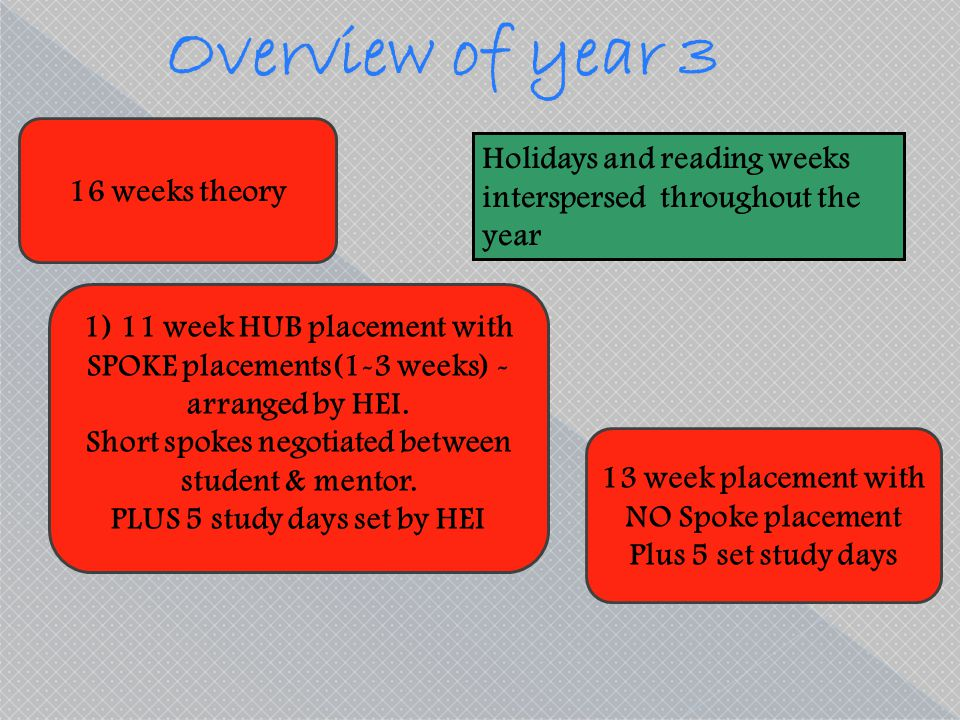 Overview of year 3 Holidays and reading weeks 16 weeks theory