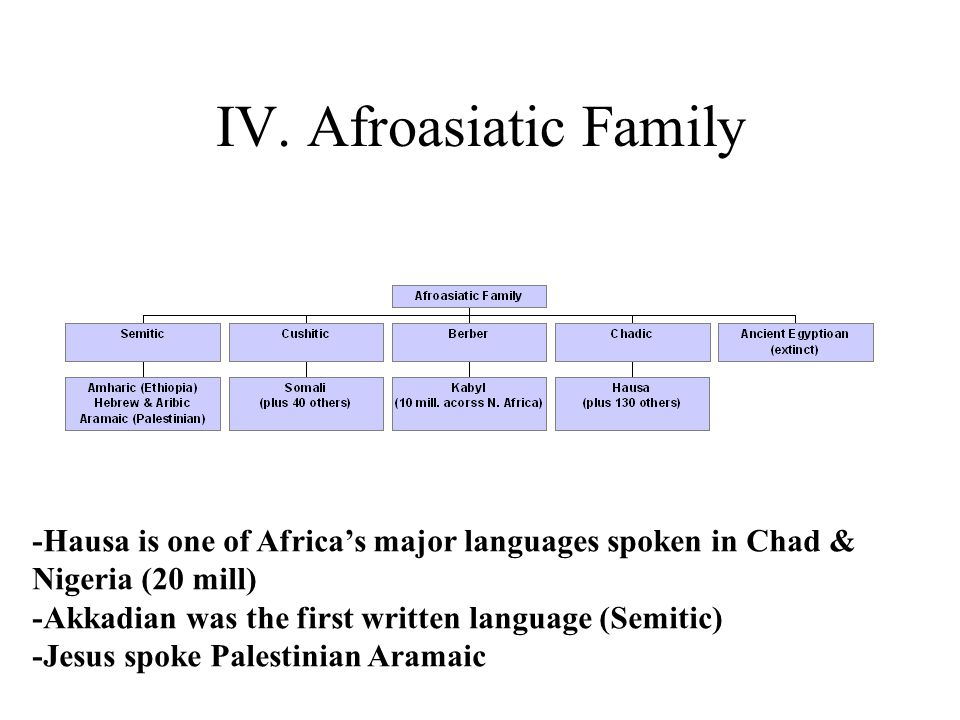 IV. Afroasiatic Family -Hausa is one of Africa's major languages spoken in Chad & Nigeria (20 mill)