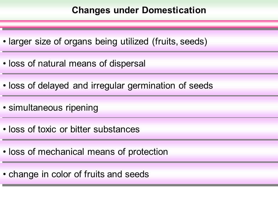Changes under Domestication