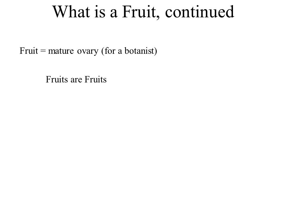 What is a Fruit, continued