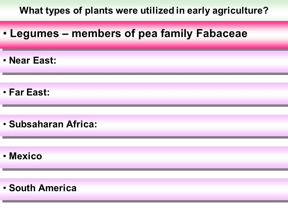What types of plants were utilized in early agriculture