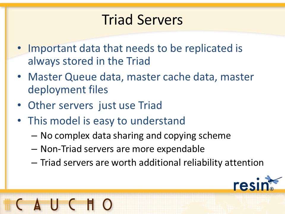 Triad Servers Important data that needs to be replicated is always stored in the Triad.