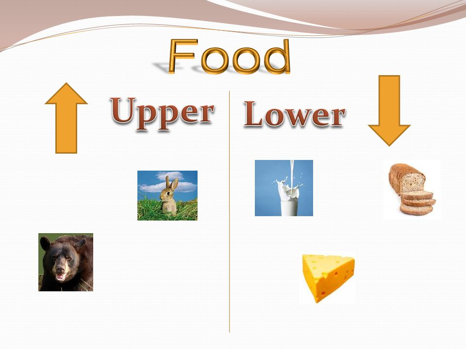 Food Upper Lower