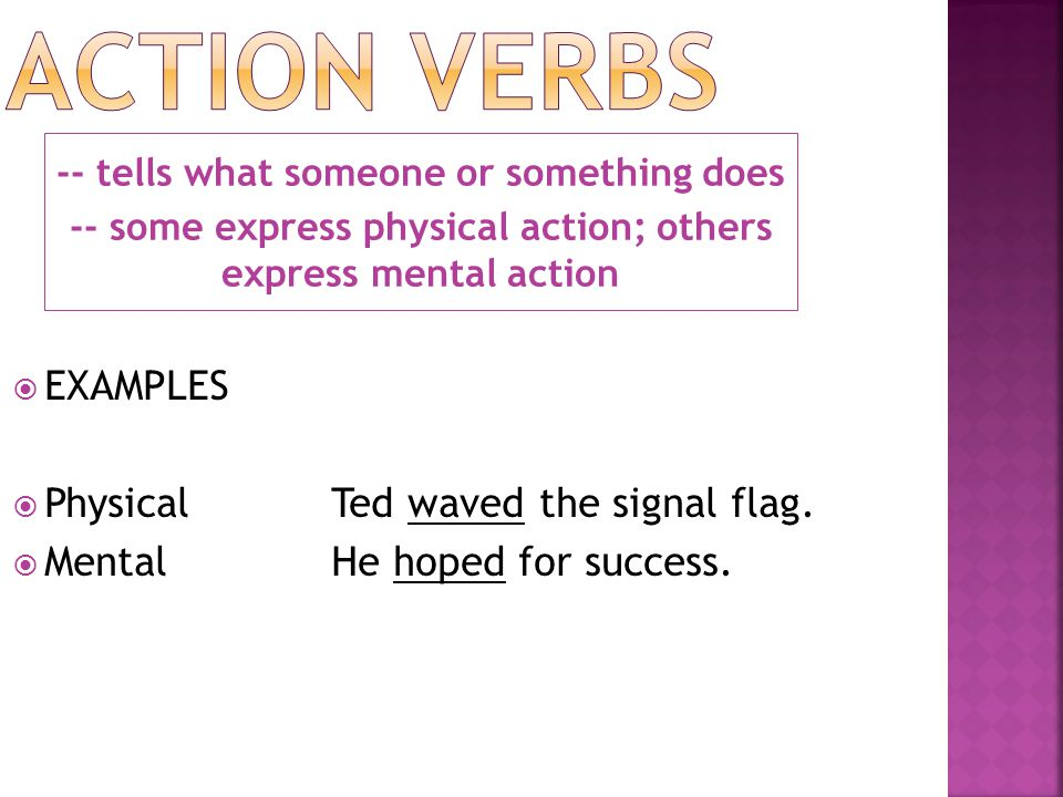 Action Verbs EXAMPLES Physical Ted waved the signal flag.