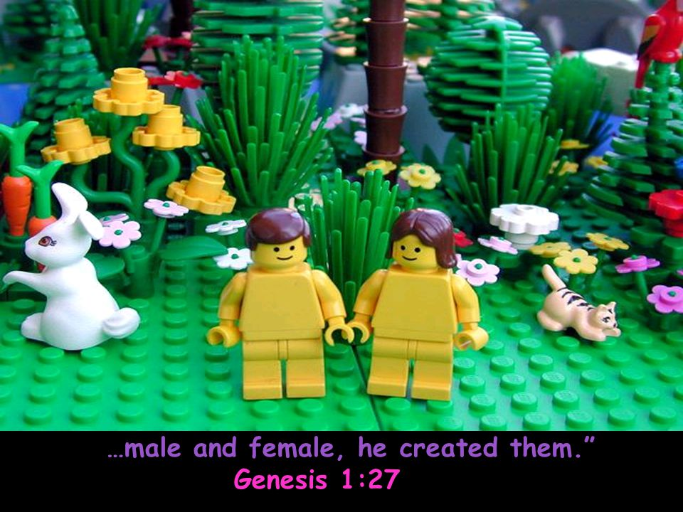 …male and female, he created them.