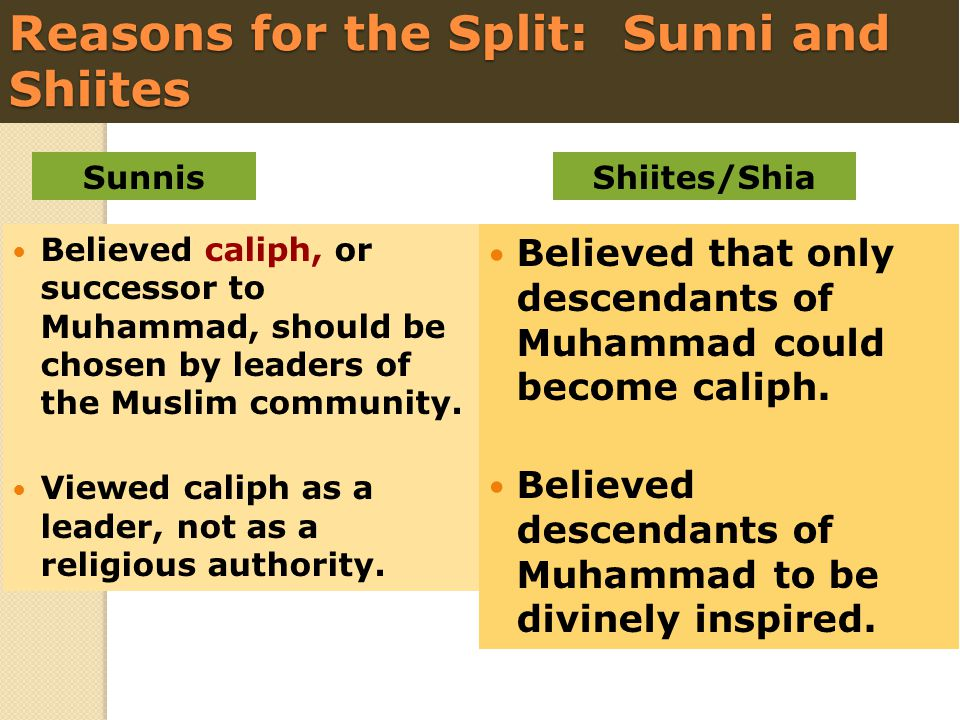 Reasons for the Split: Sunni and Shiites