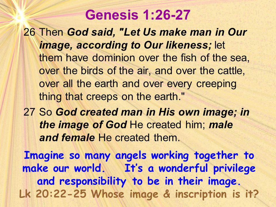 Genesis 1:26-27