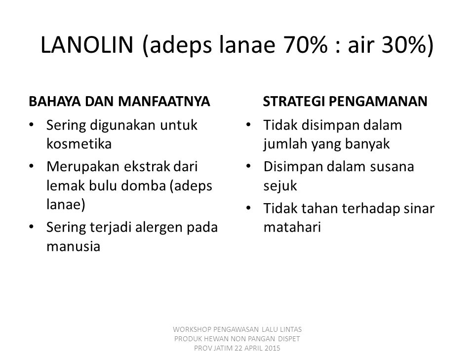 LANOLIN (adeps lanae 70% : air 30%)