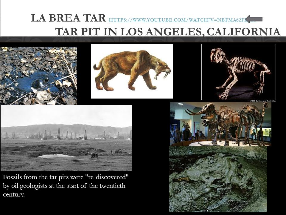 La Brea Tar https://www. youtube. com/watch