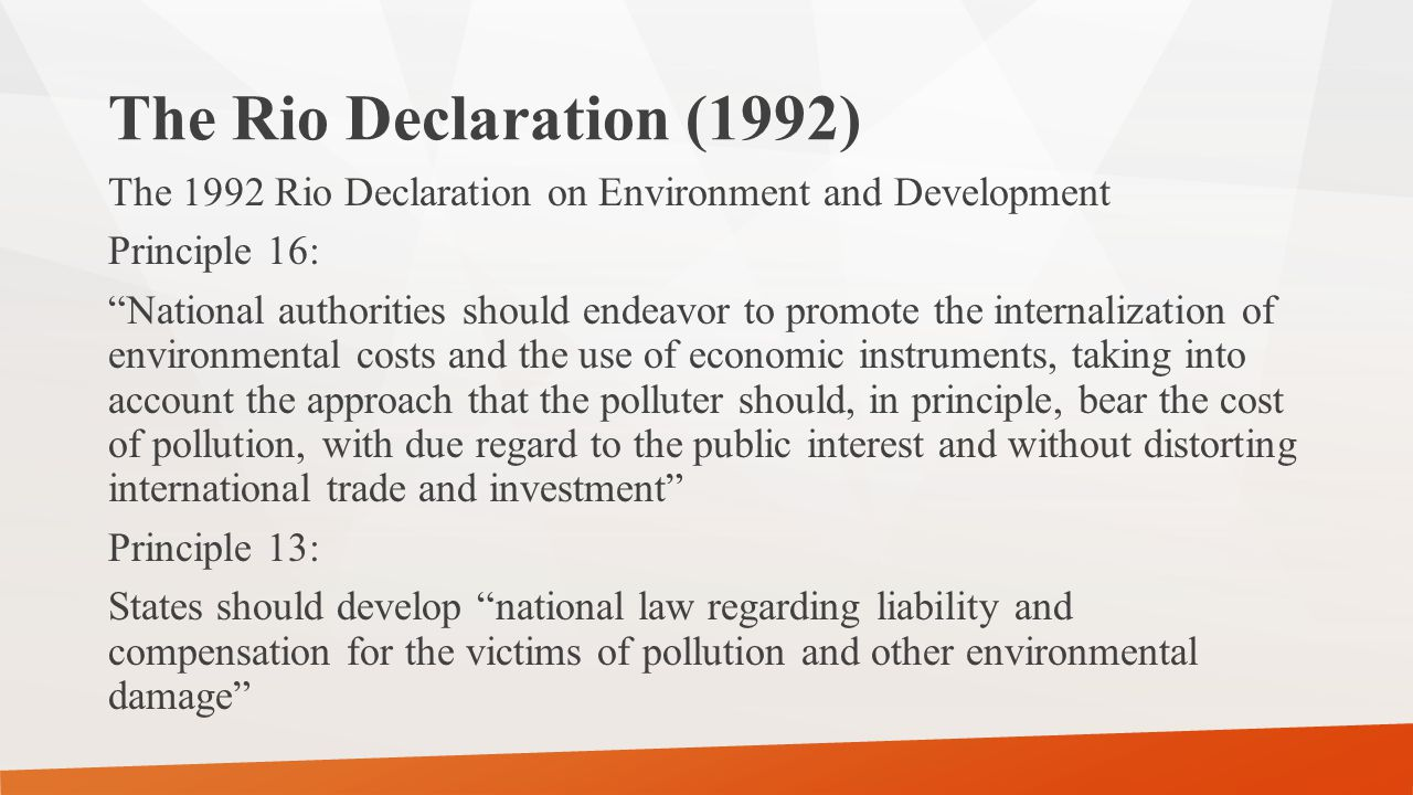 The Rio Declaration (1992)