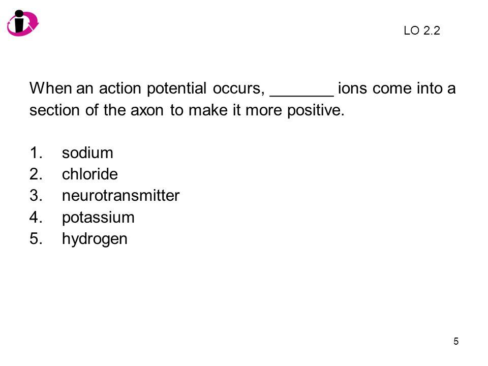 When an action potential occurs, _______ ions come into a