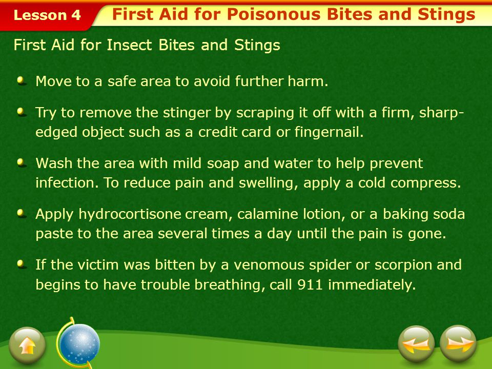 First Aid for Poisonous Bites and Stings