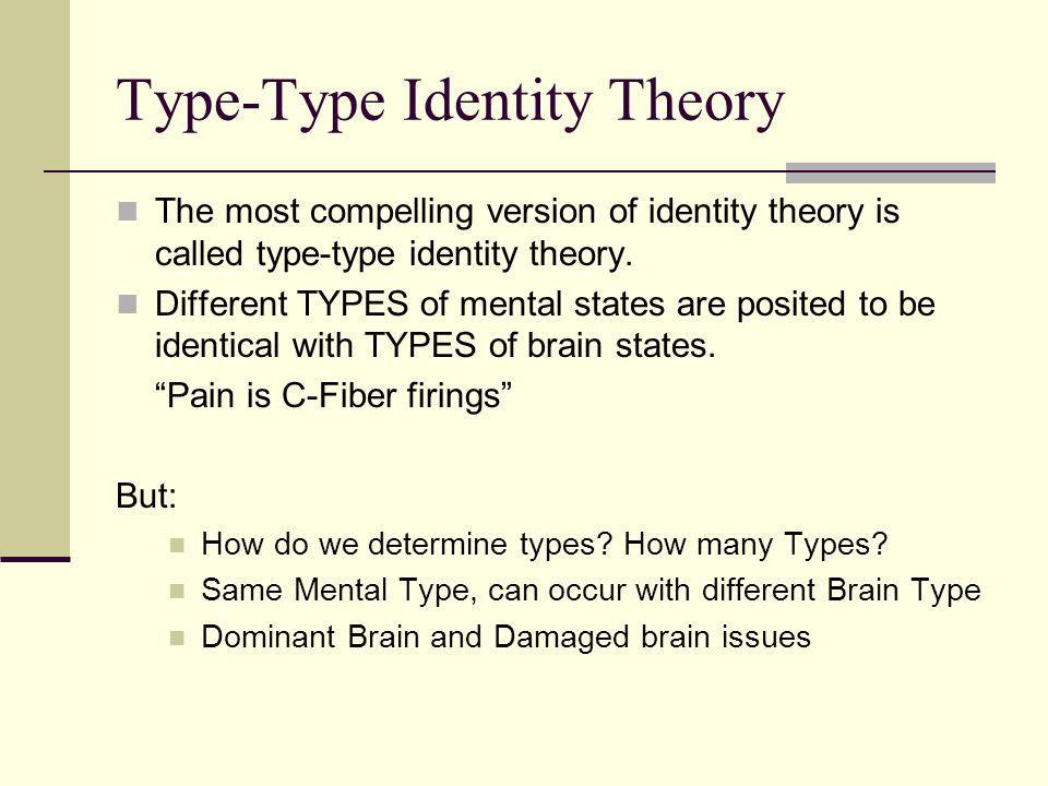Type-Type Identity Theory