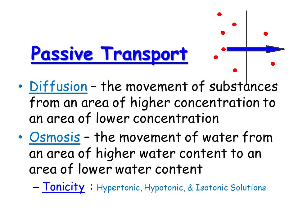 Passive Transport Diffusion – the movement of substances from an area of higher concentration to an area of lower concentration.
