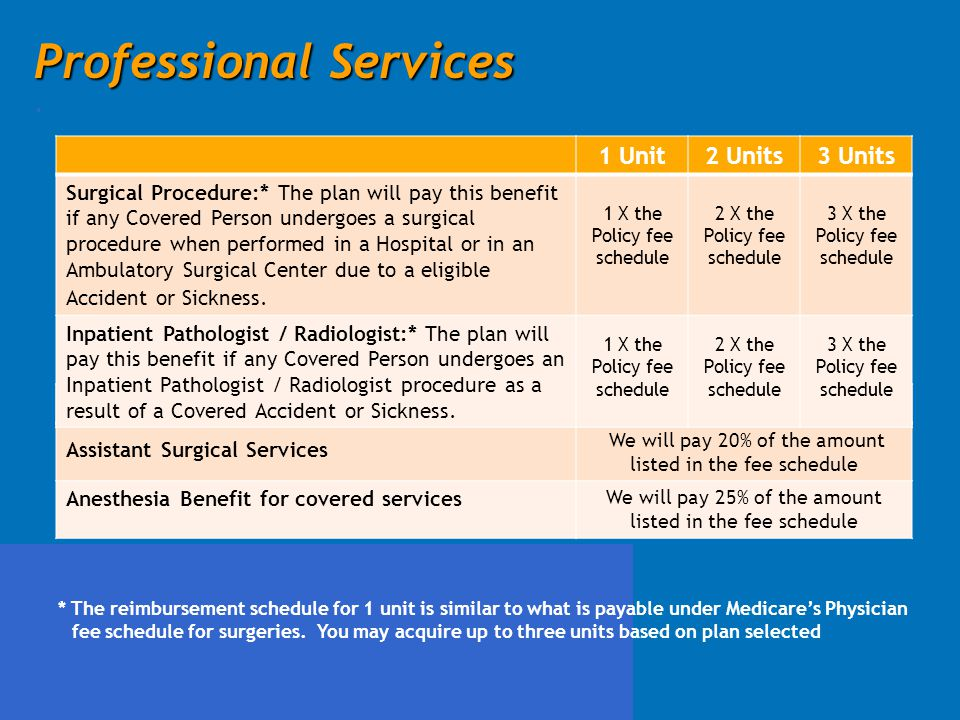 Professional Services .