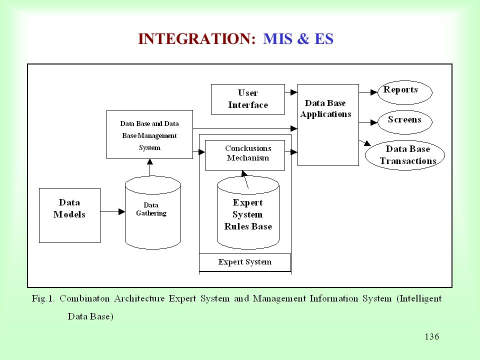 INTEGRATION: MIS & ES