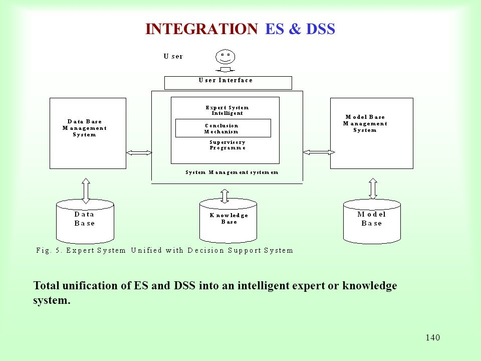 INTEGRATION ES & DSS Total unification of ES and DSS into an intelligent expert or knowledge system.