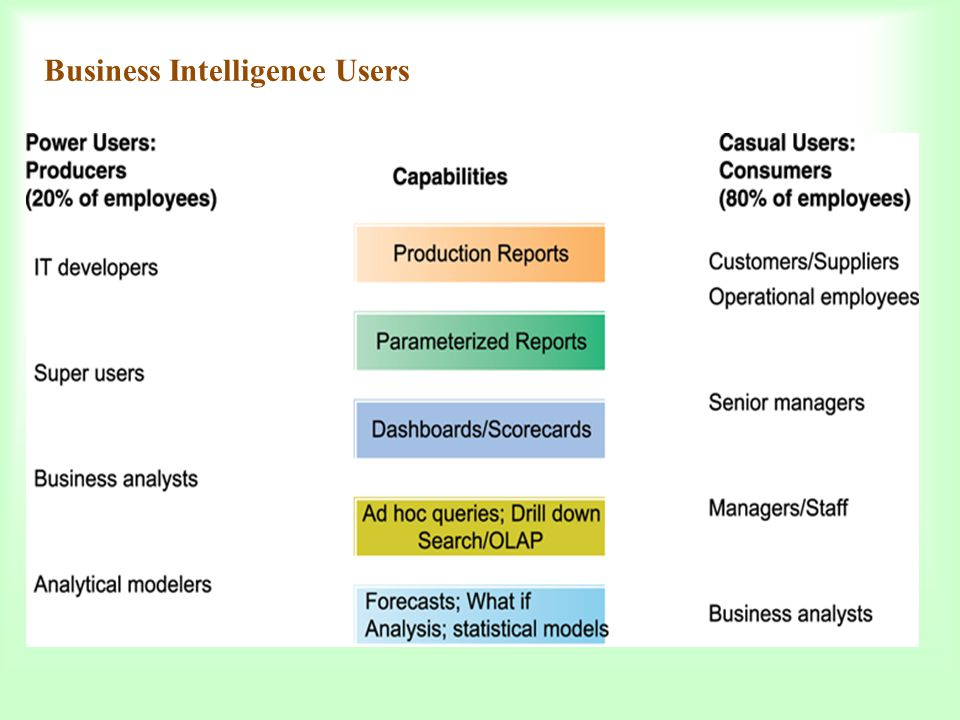Business Intelligence Users