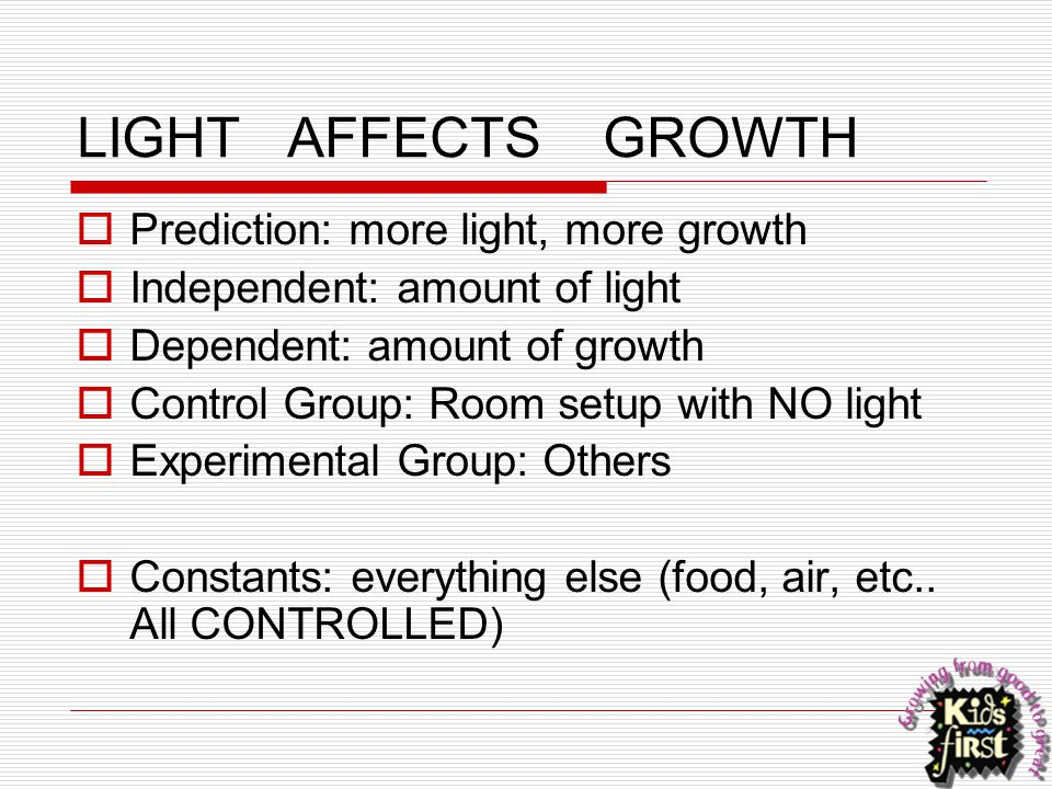 LIGHT AFFECTS GROWTH Prediction: more light, more growth