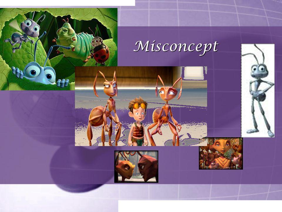 Misconcept