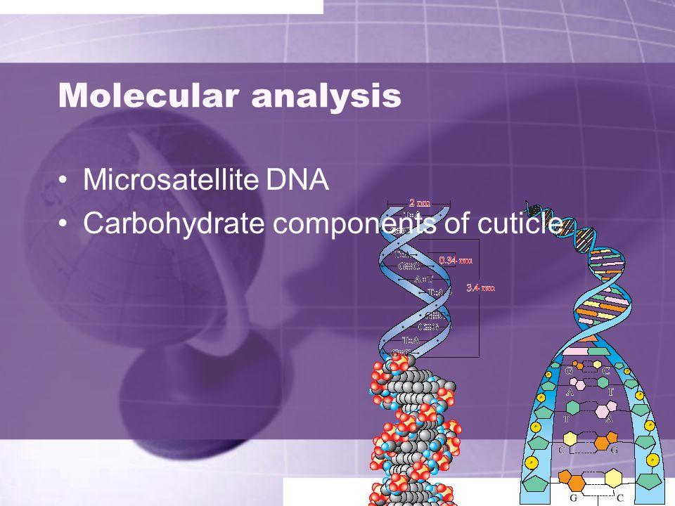 Molecular analysis Microsatellite DNA