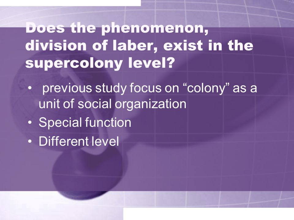 Does the phenomenon, division of laber, exist in the supercolony level