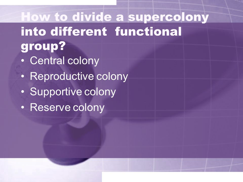How to divide a supercolony into different functional group