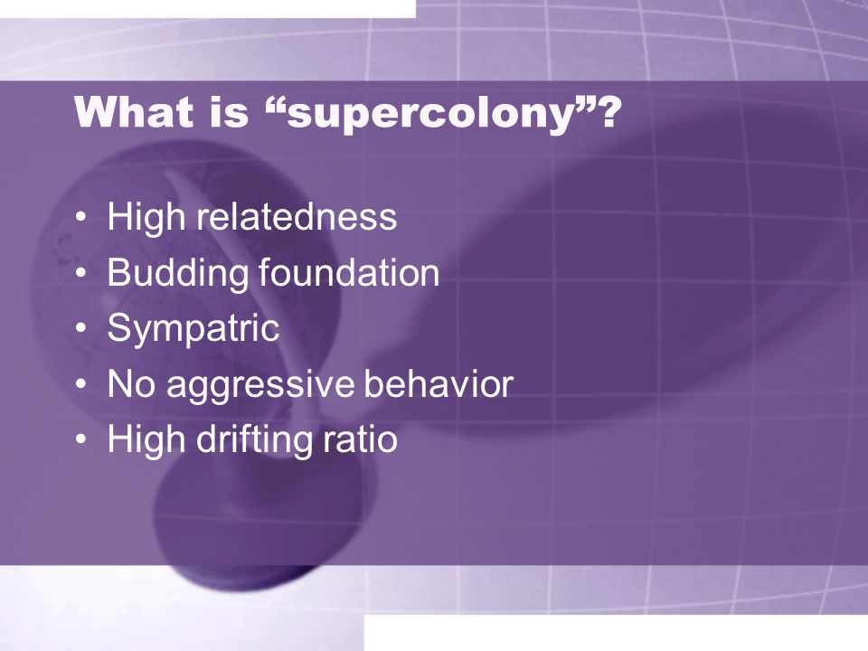 What is supercolony High relatedness Budding foundation Sympatric