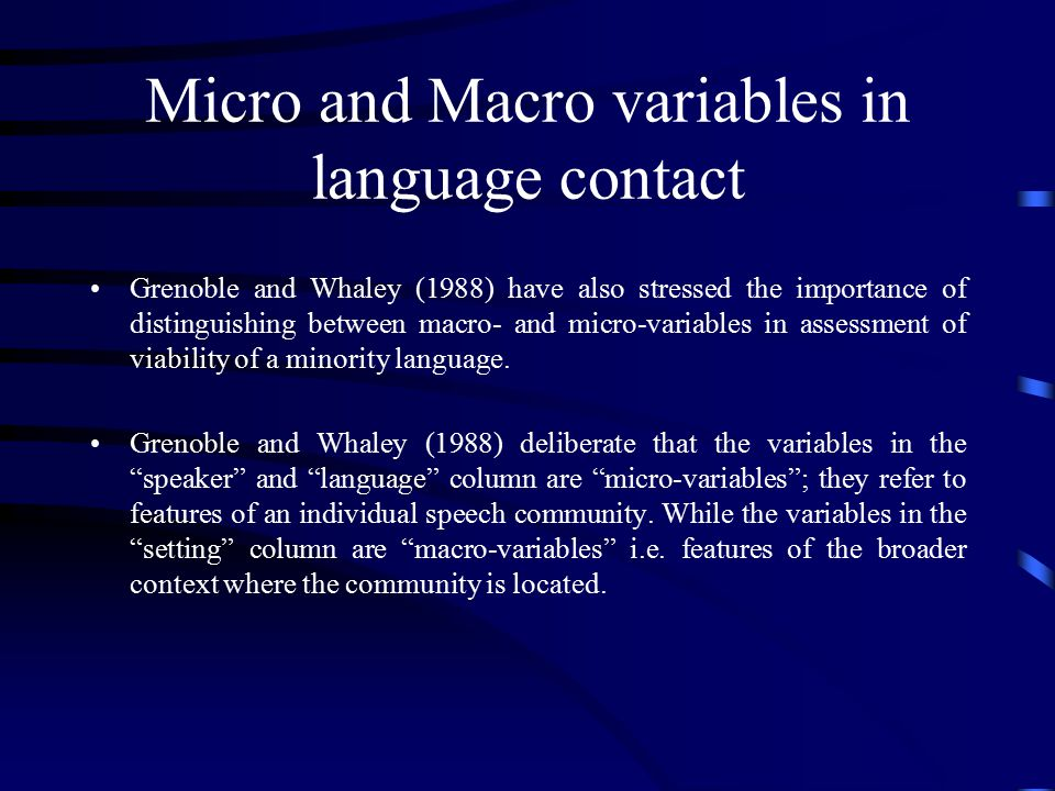 Micro and Macro variables in language contact