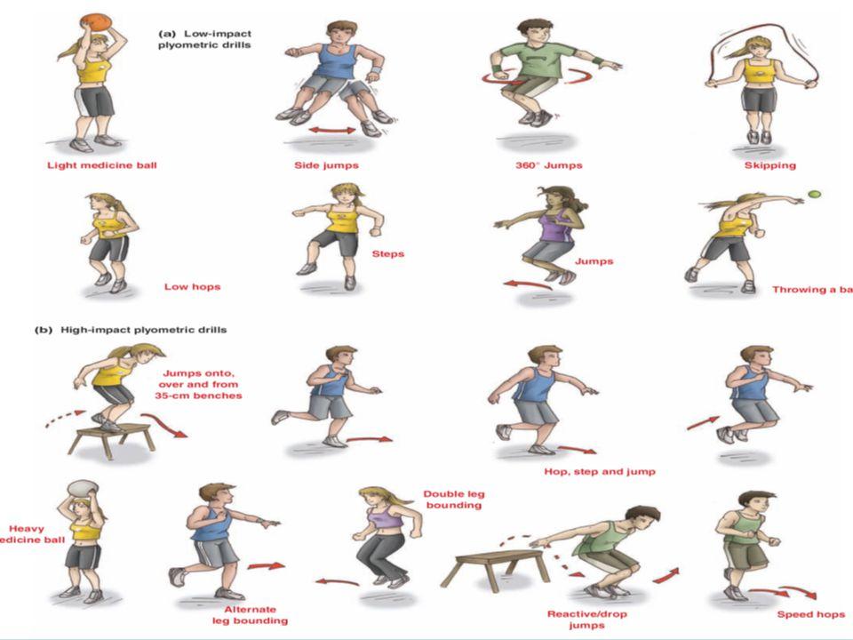 VCE Physical Education - Unit 4