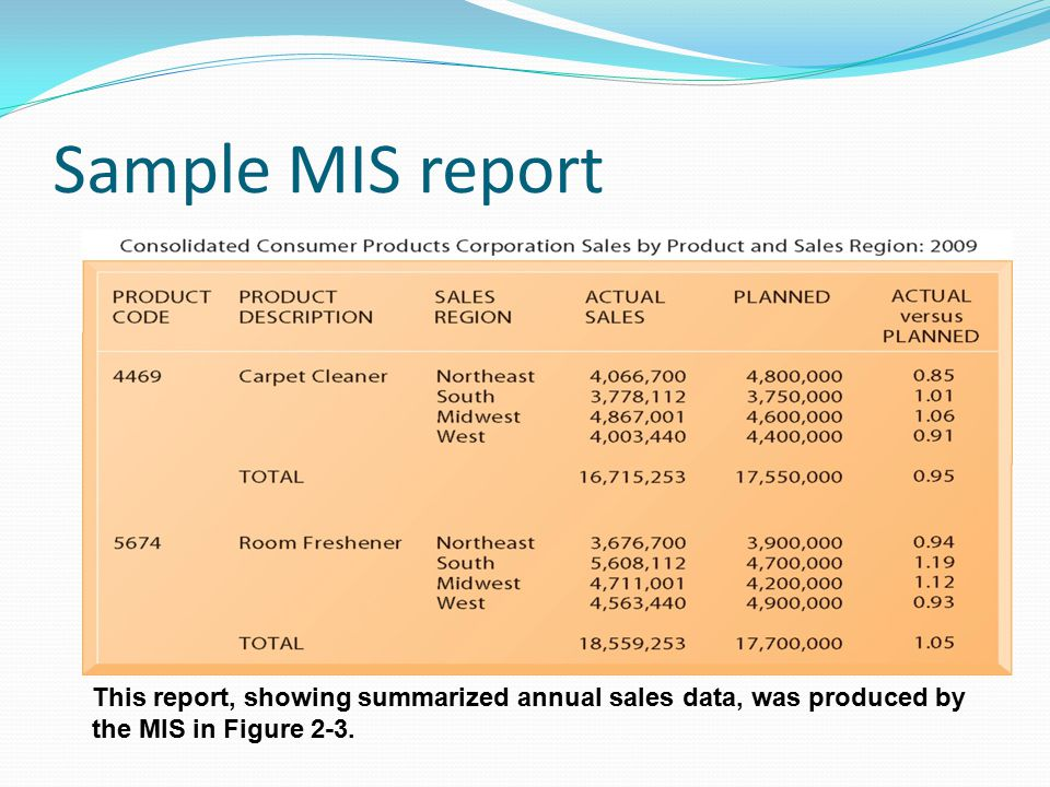Sample MIS report This report, showing summarized annual sales data, was produced by the MIS in Figure 2-3.