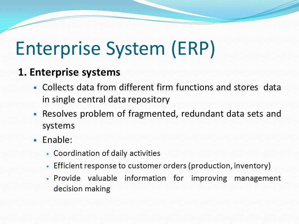 Enterprise System (ERP)