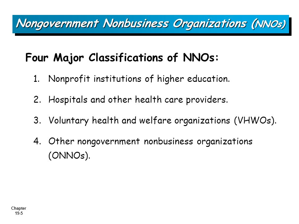 Nongovernment Nonbusiness Organizations (NNOs)