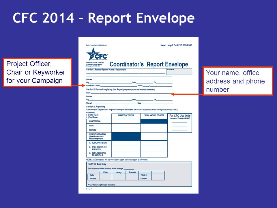 CFC 2014 – Report Envelope Project Officer, Chair or Keyworker for your Campaign.