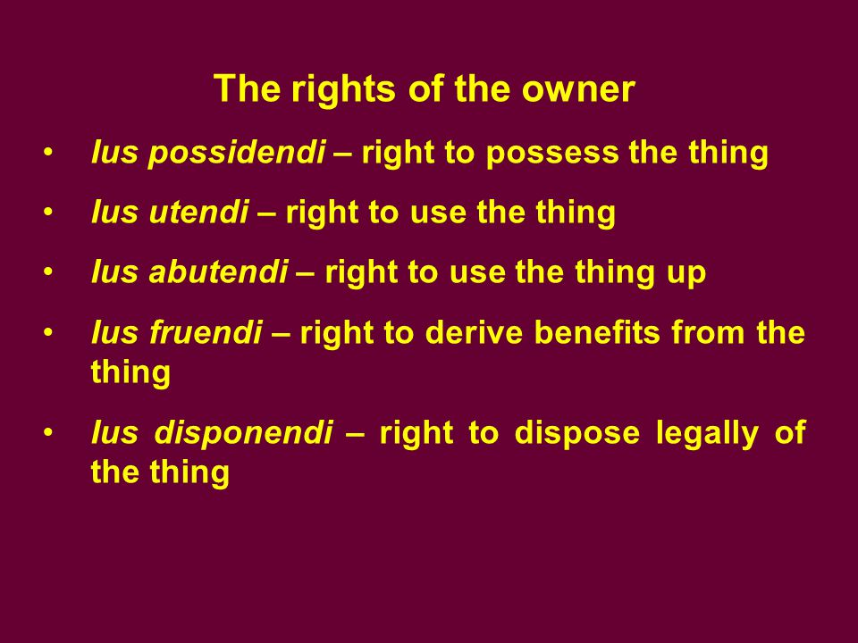 The rights of the owner Ius possidendi – right to possess the thing