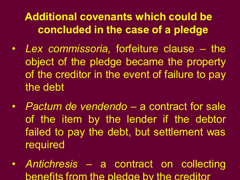 Additional covenants which could be concluded in the case of a pledge