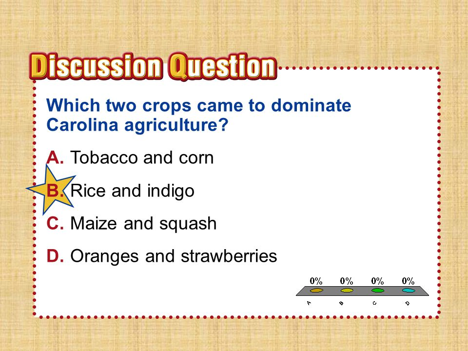 A B C D Which two crops came to dominate Carolina agriculture