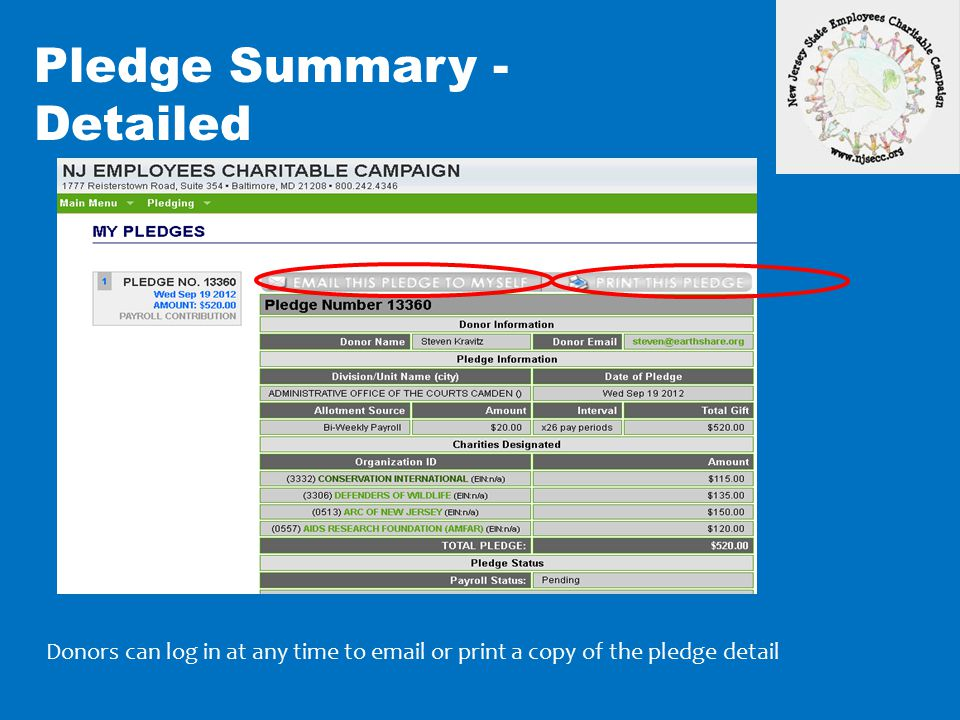 Pledge Summary - Detailed