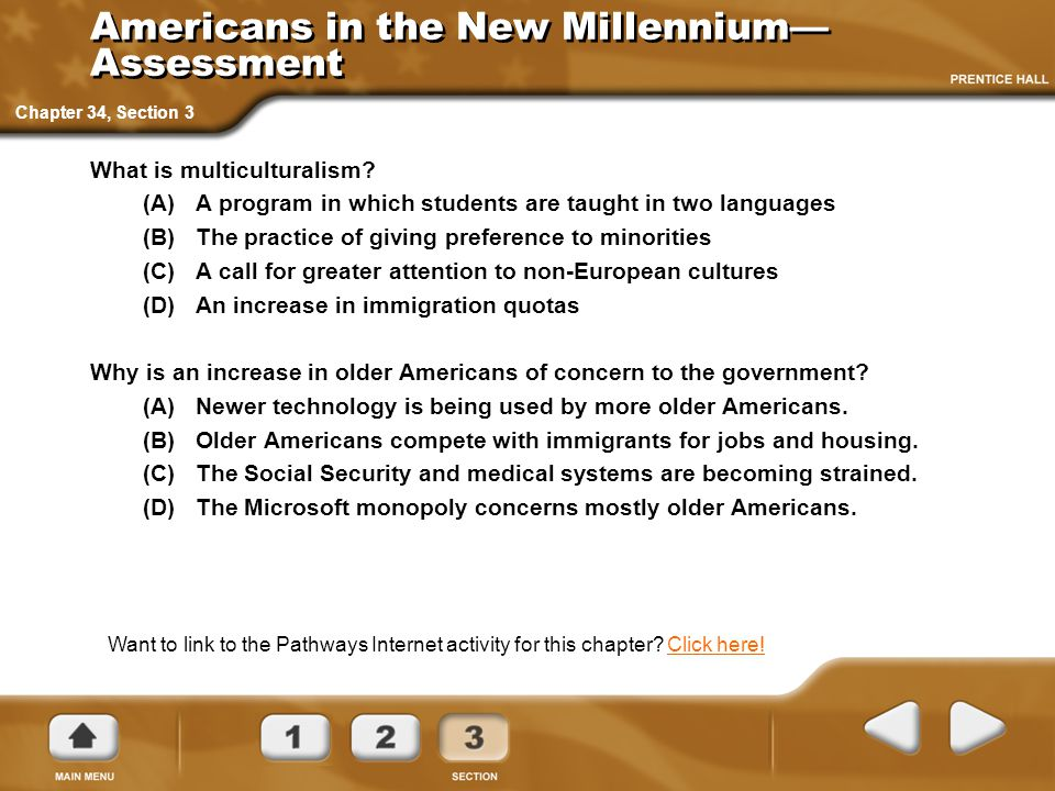 Americans in the New Millennium—Assessment