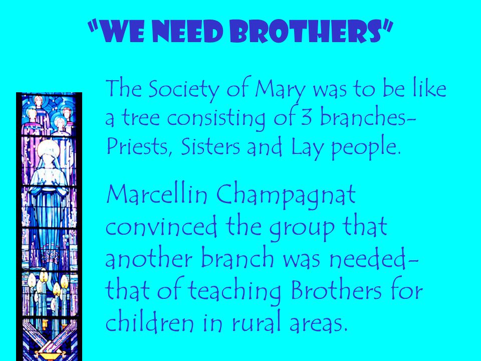WE NEED BROTHERS The Society of Mary was to be like a tree consisting of 3 branches-Priests, Sisters and Lay people.